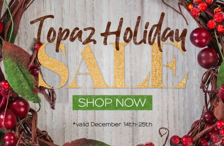 topaz labs holiday 2018 sale