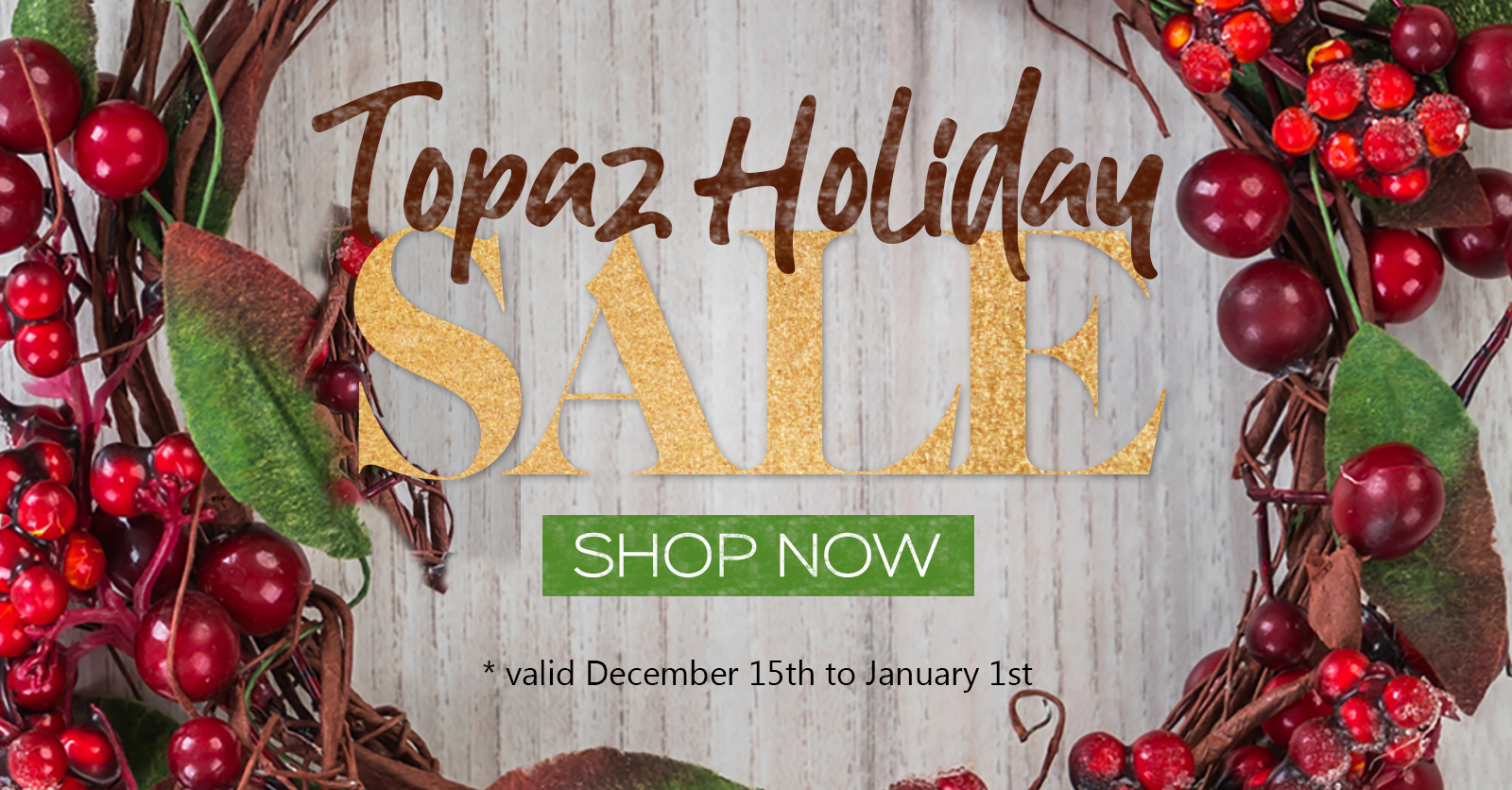 Topaz Labs 2020 year end sale